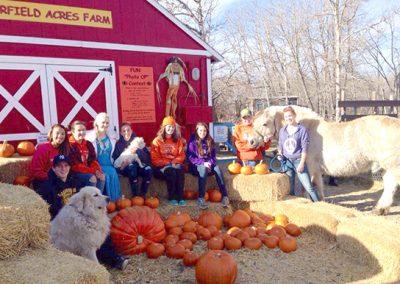 Butterfield Acres Harvest Pumpkin Hunt