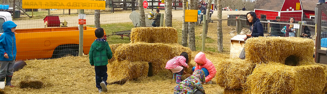 Calgary Petting Zoo | Butterfield Acres